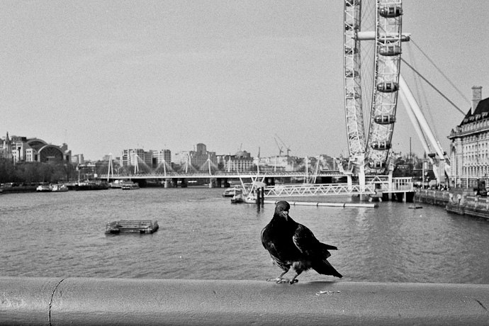 London-Photojournalism_028