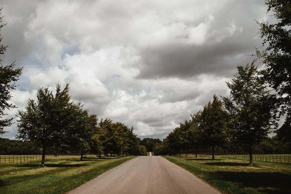 140809_Larmer-Tree_001.jpg