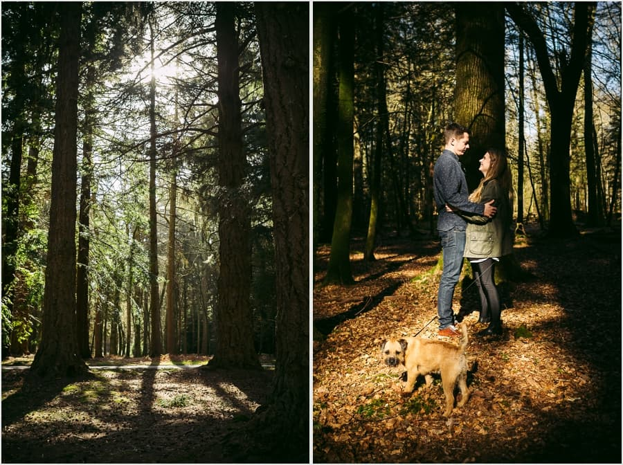 New-Forest-Engagement-Photography_0003.jpg