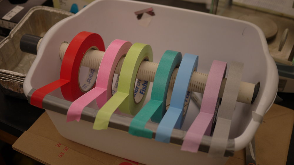 Color-coded tape in the lab.   Photo: Logan Shannon