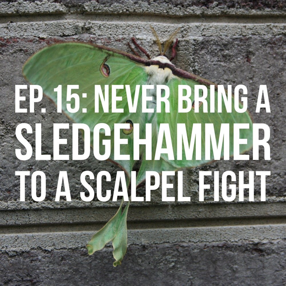 Episode 15:NEVER BRING A SLEDGEHAMMER TO A SCALPEL FIGHT