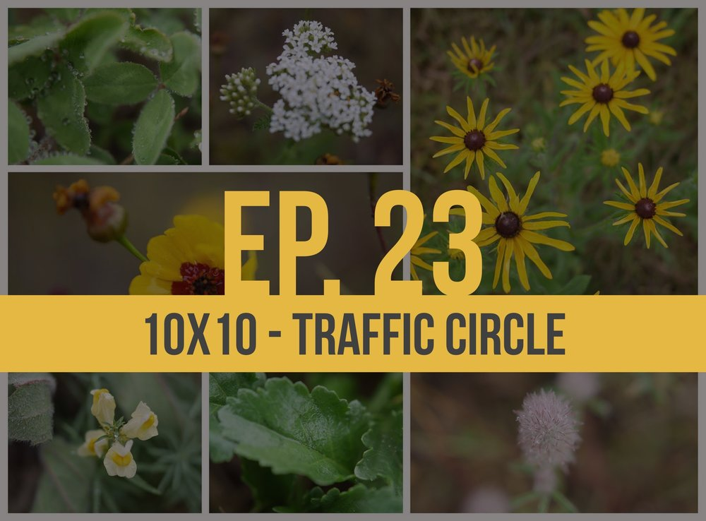 Episode 23: 10x10 - Traffic Circle