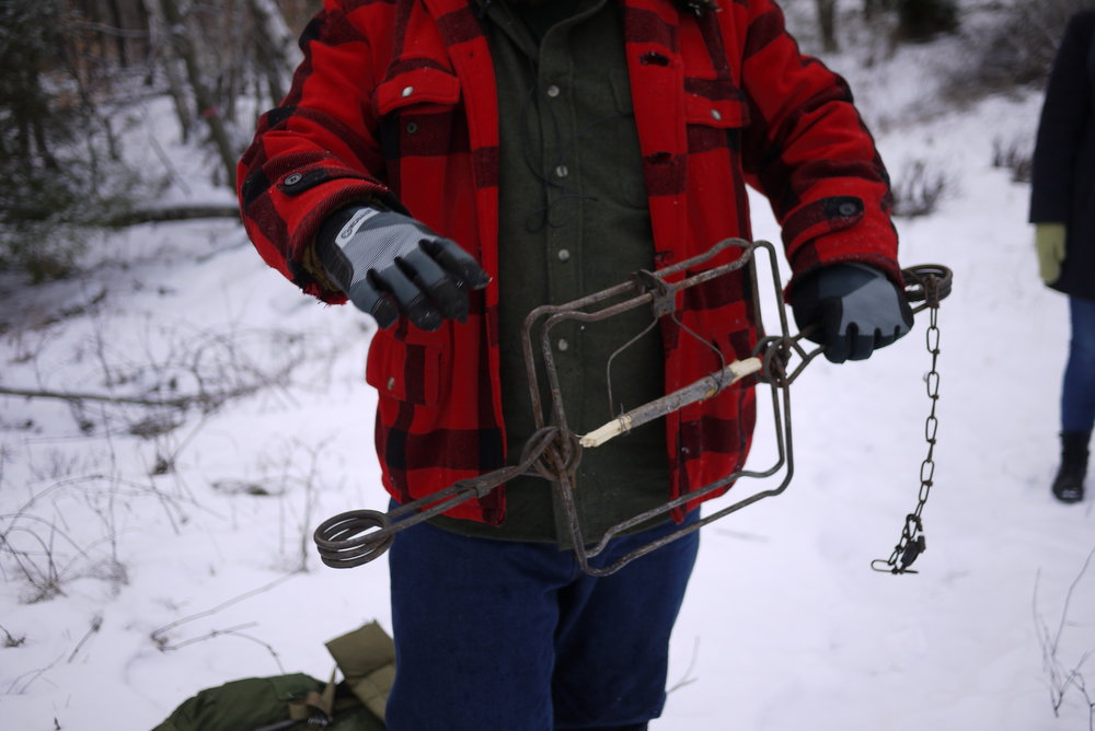 Jeff Traynor shows us one of his beaver traps. The stick is the food. | Photo: Logan Shannon