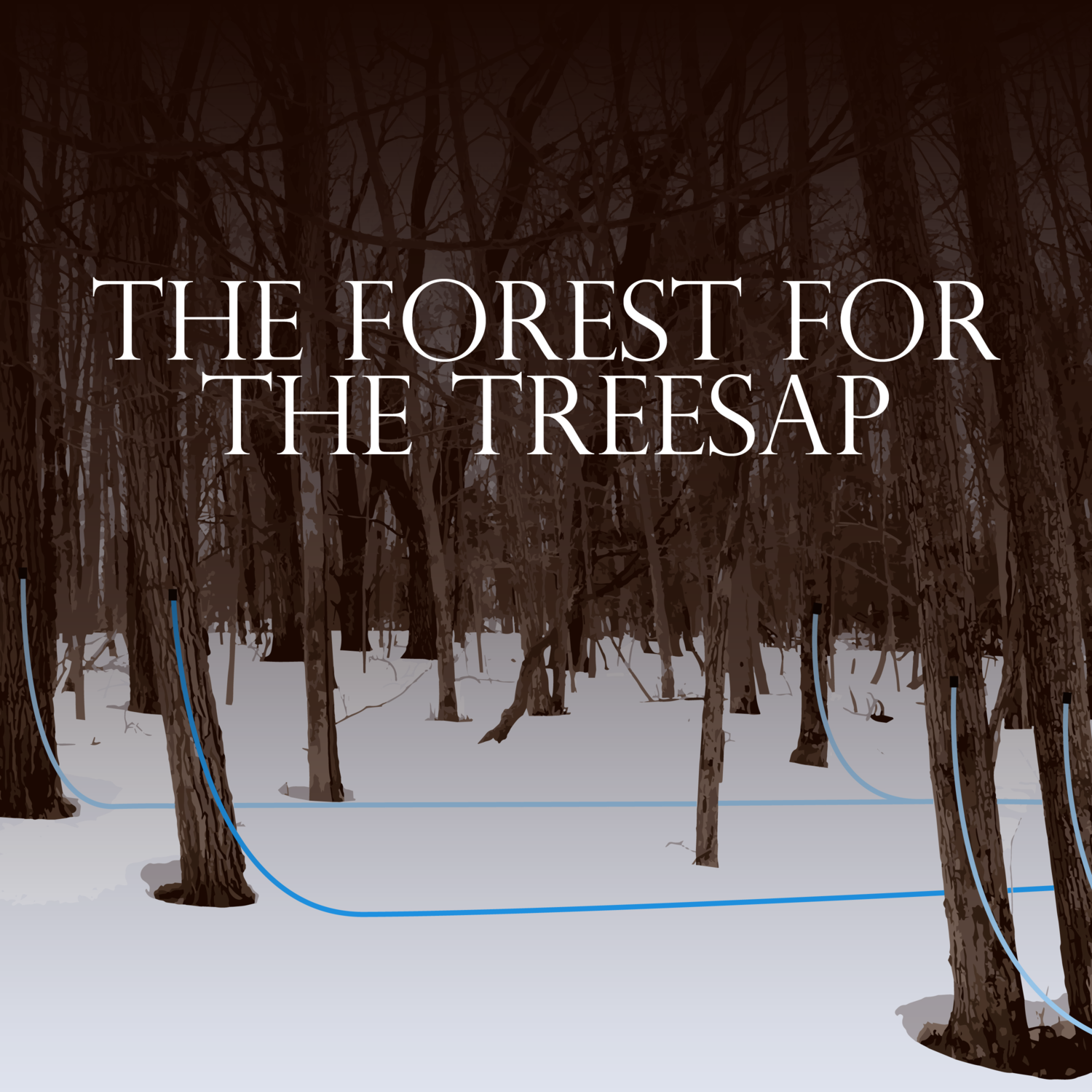 51ae21a92bd The Forest for the Treesap — Outside In