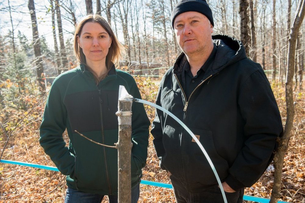 Abby Van Den Berg and Tim Perkins, her coauthor, and their innovation at the Proctor Maple Research Facility. (Photo courtesy University of Vermont)