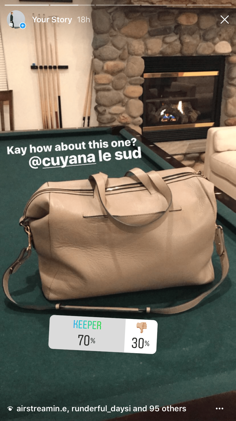 Cuyana review le sud leather travel bag.PNG