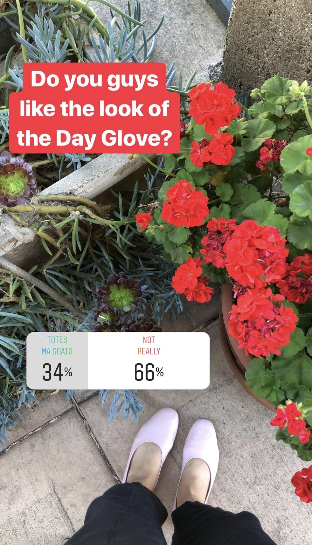 Everlane Review the Day Glove poll
