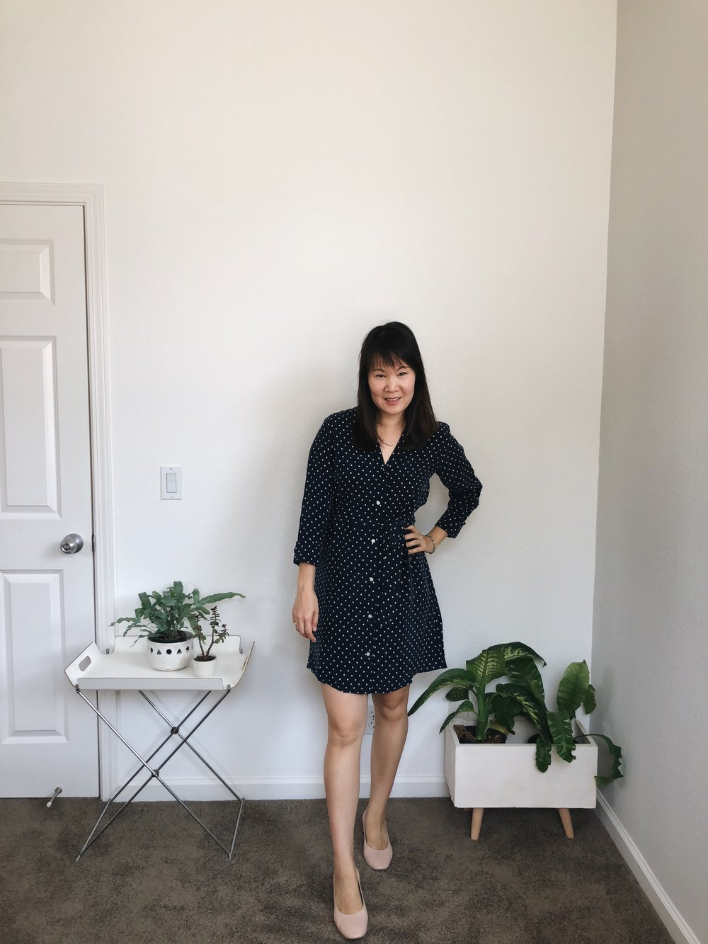 Everlane Review The Polka Dot Shirt Dress