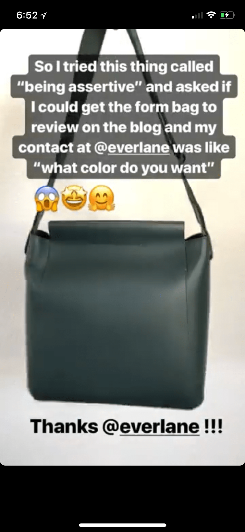 Everlane Form Bag Review