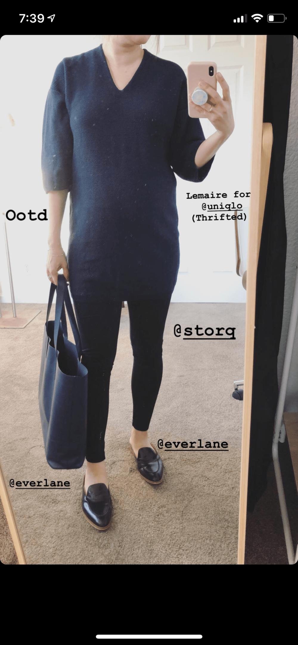 Everlane Review Day Market Tote