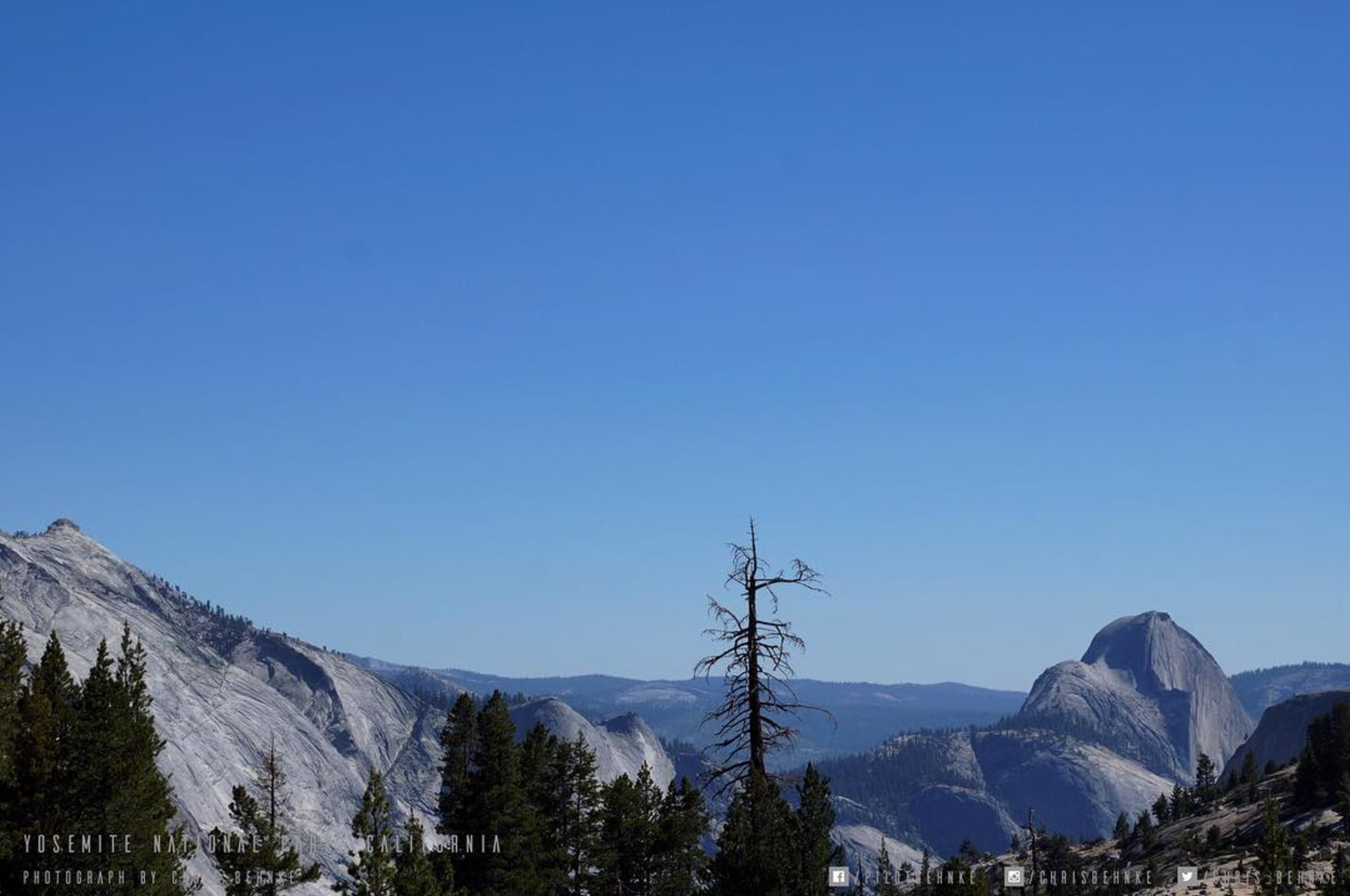 Half Dome in the background on a perfect day in Yosemite