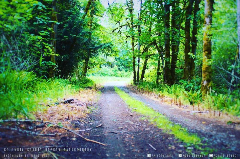 Some little backroad deep in Oregon (near my hometown)