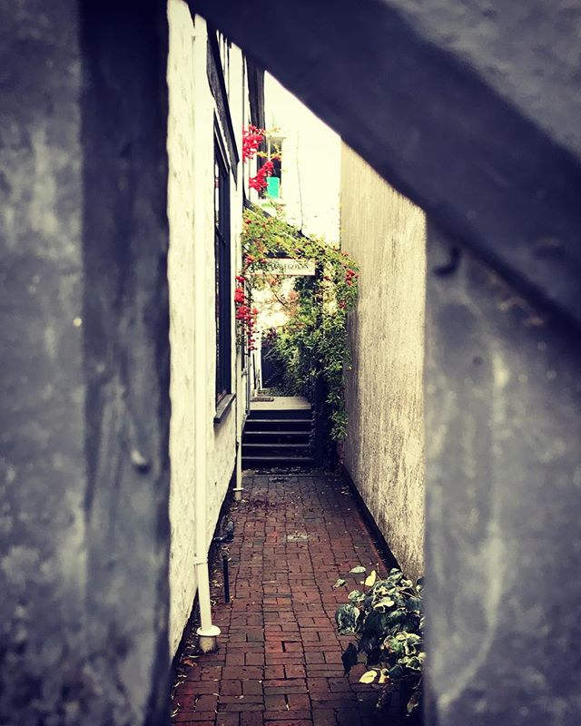 Why not go and see? . Finding secret nooks down narrow alleys reveals magical experiences. . #canada #victoria #streetphotopics #streetclassics #streetphotography #streetcollectors #street_visions #streetleaks #streetmagazine #wearethestreets #citygrammers #citykillerz #exploreeverything #urbanandstreet #publicimage #artstreet #streetlook #street_perfection #street_life #streetlovers #entrepreneur #entrepreneurlife #behnkeadventures #goodlife #liveauthentic #welltravelled #exploretocreate  #stayandwander #lifeofadventure