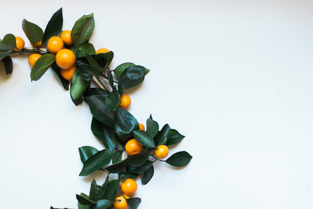 orangewreath-5954.jpg