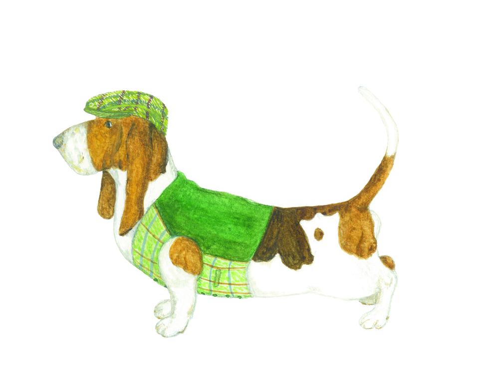 yorkshire dog.jpg