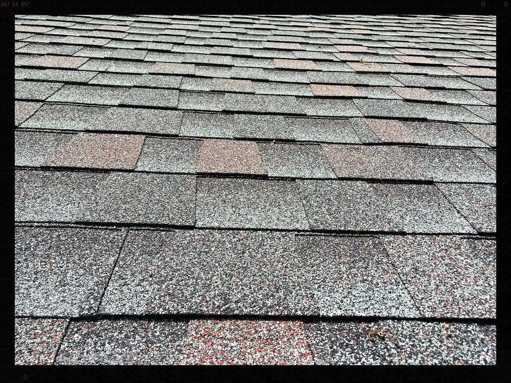 WilliamsBurg Slate shingle color