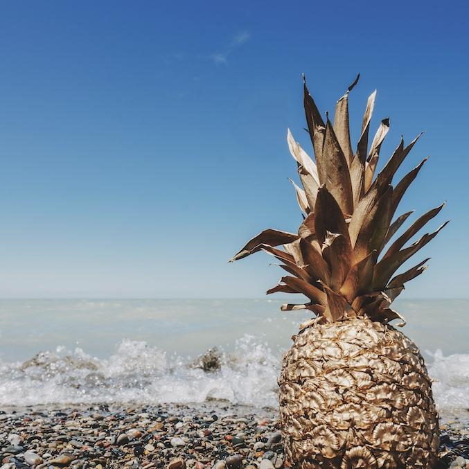 pineapple-supply-co-103157.jpg