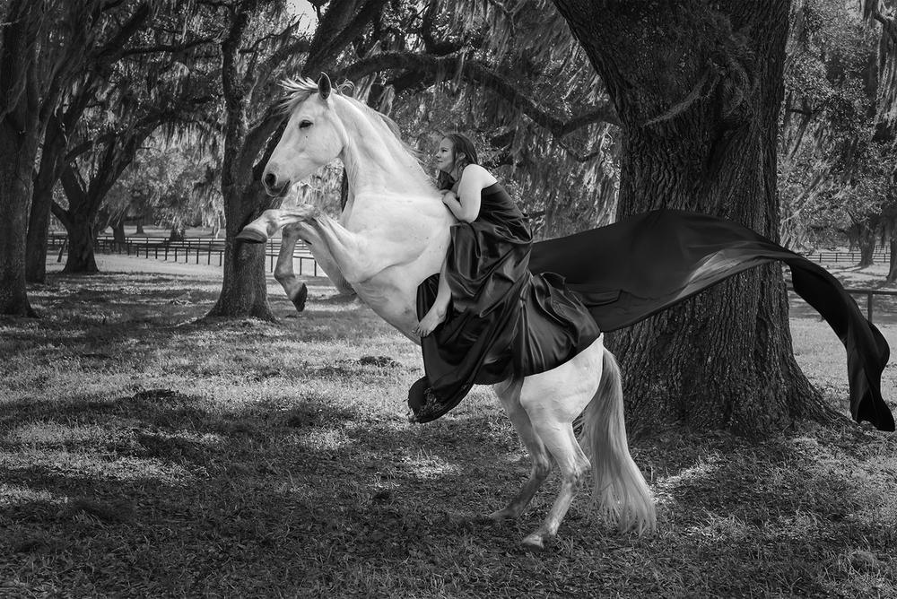 rearinghorse