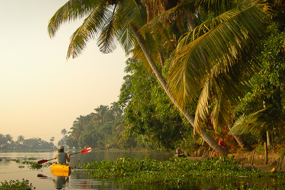 KAYAKING TRIPS IN THE BACKWATERS OF GOA, INDIA