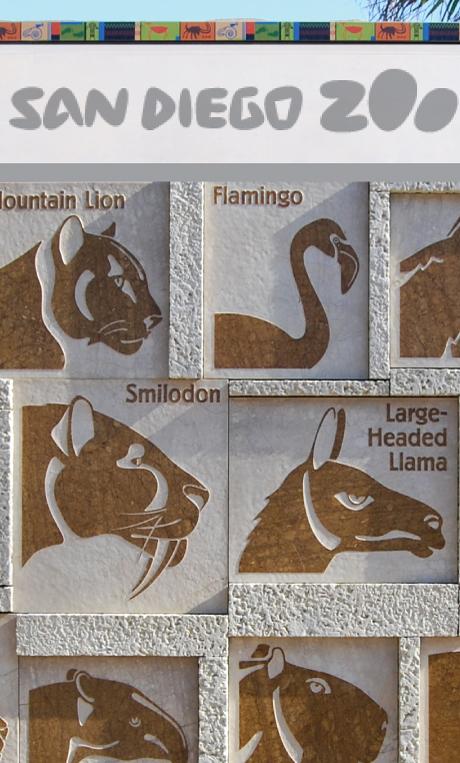 San Diego Zoo Exhibit Design