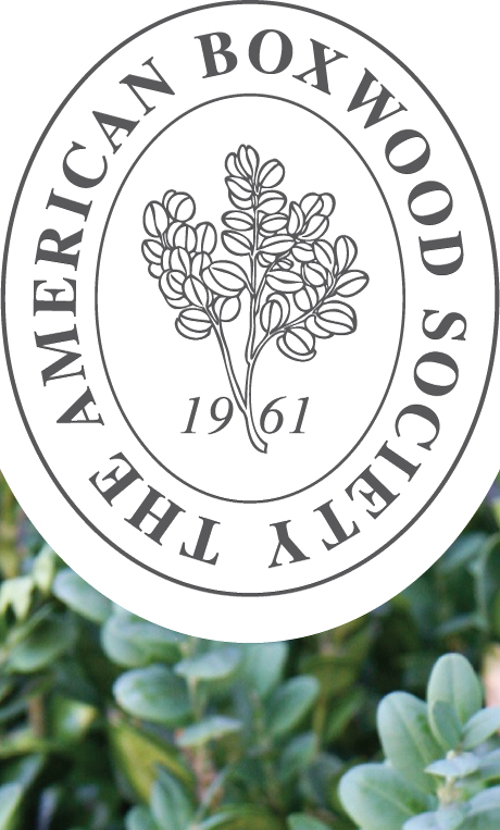 American Boxwood Society