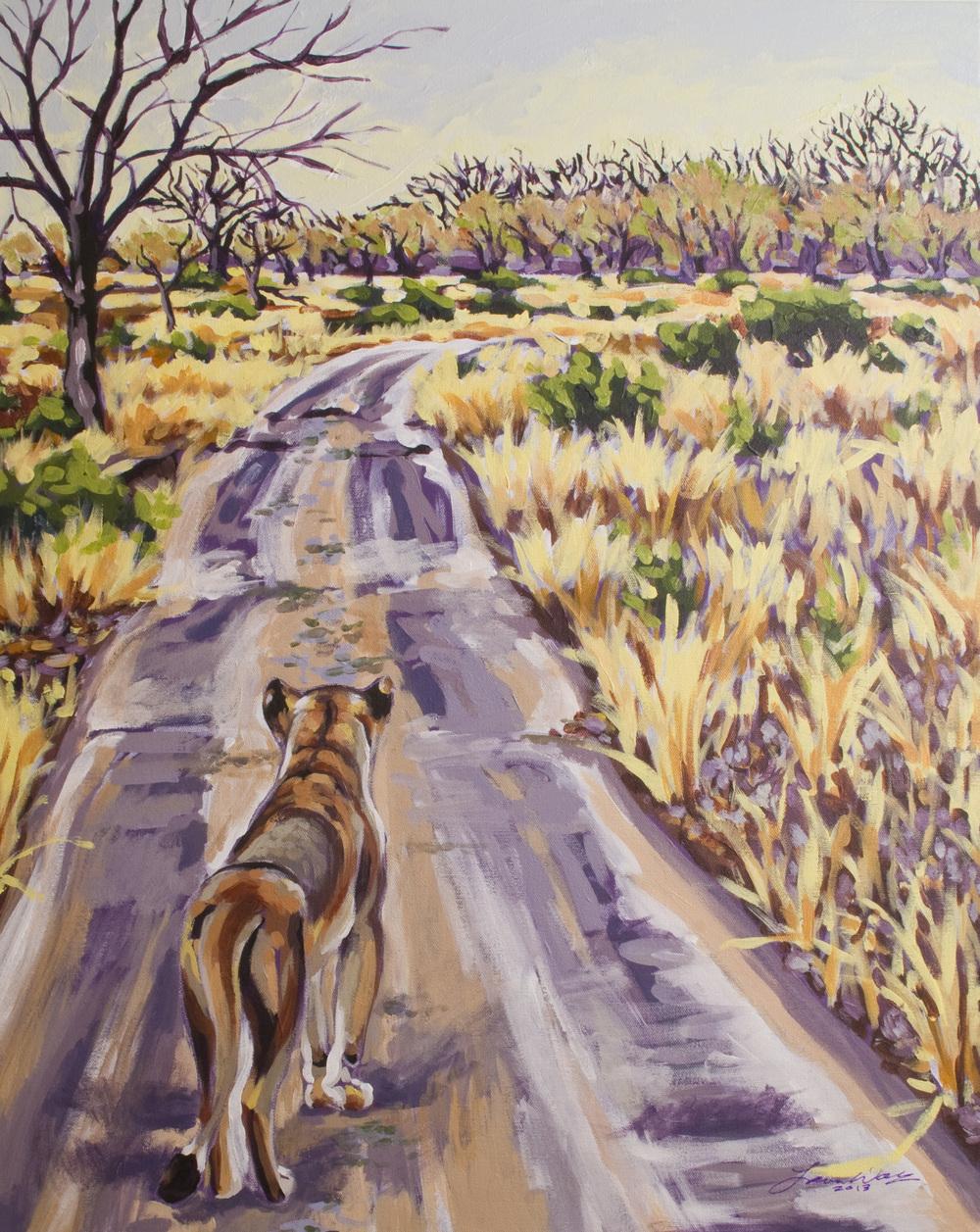 Lioness Landscape