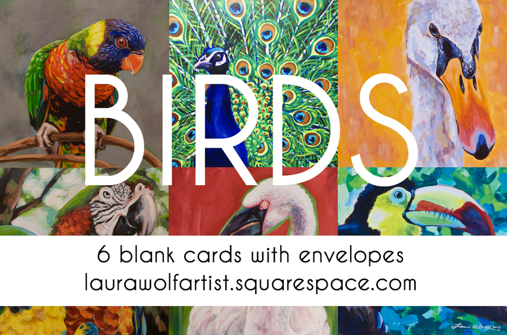 Including Rainbow Lorikeet, Peacock, Swan Portrait, Macaw Pair, Lesser Flamingo, and Keel BIlled Toucan.