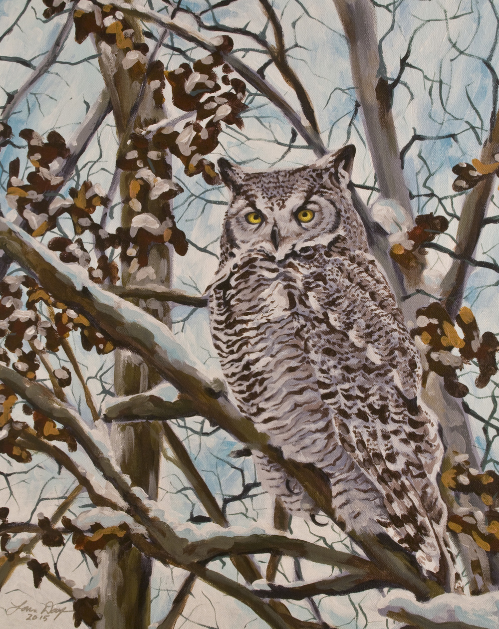 Sam's Great Horned Owl