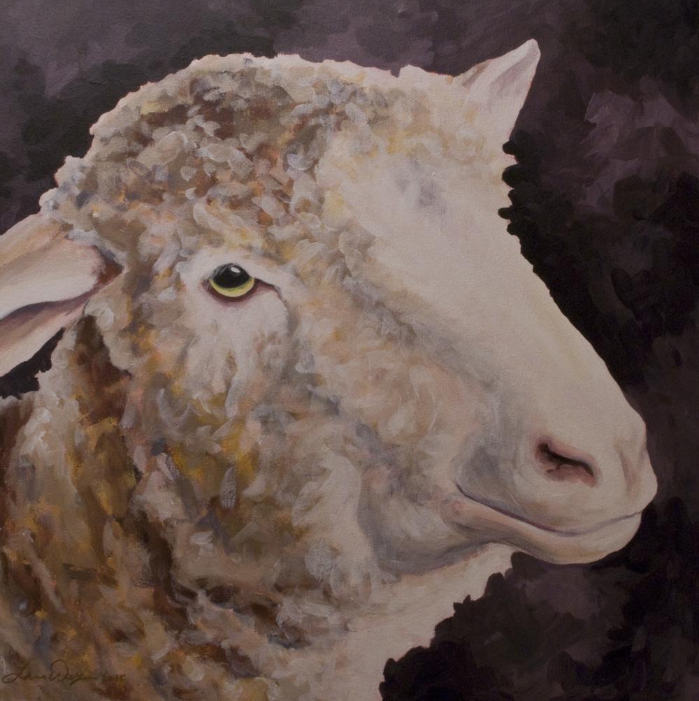 Zoe's Sheep