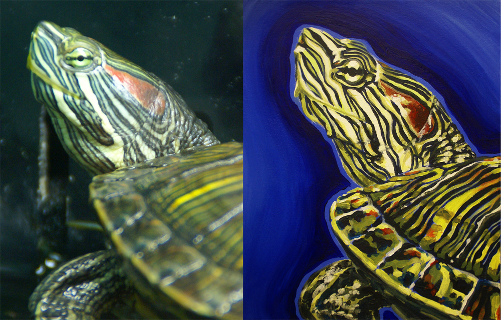 Painted Turtle, for Linda Congedo