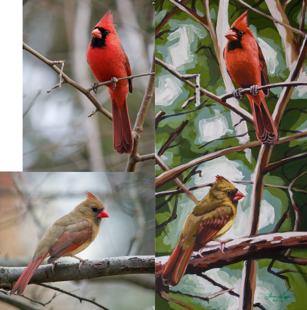 Northern Cardinal Pair, for Lolita