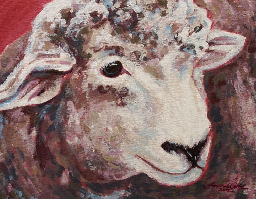 Nancy's Sheep