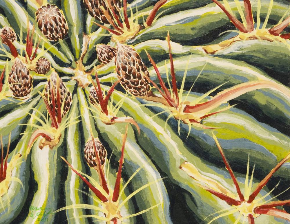 Horse Crippler Cactus