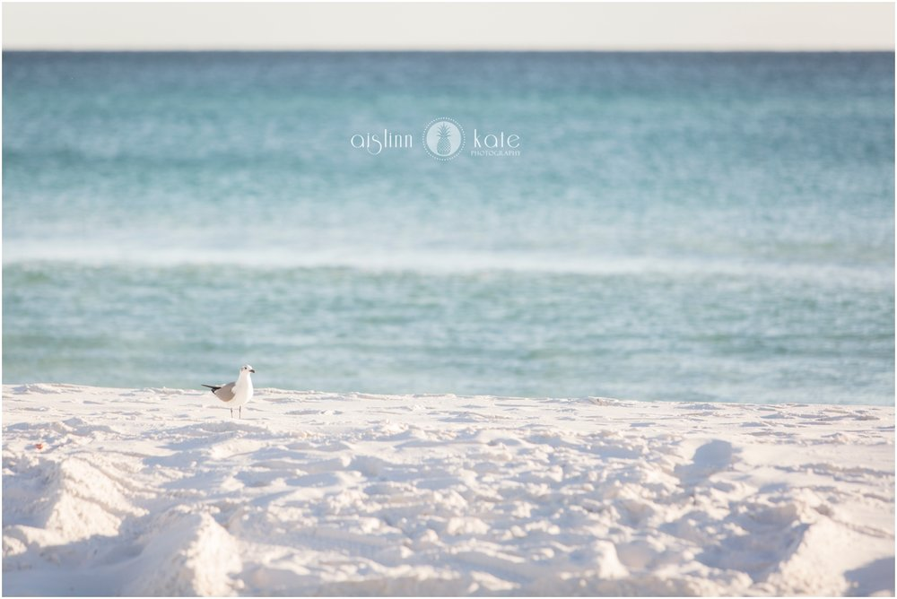 Pensacola-Destin-Wedding-Photographer_9598.jpg