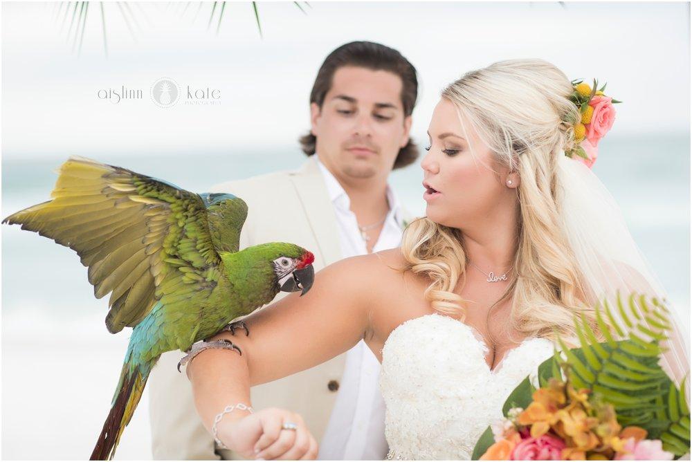 Pensacola-Destin-Wedding-Photographer_8662.jpg