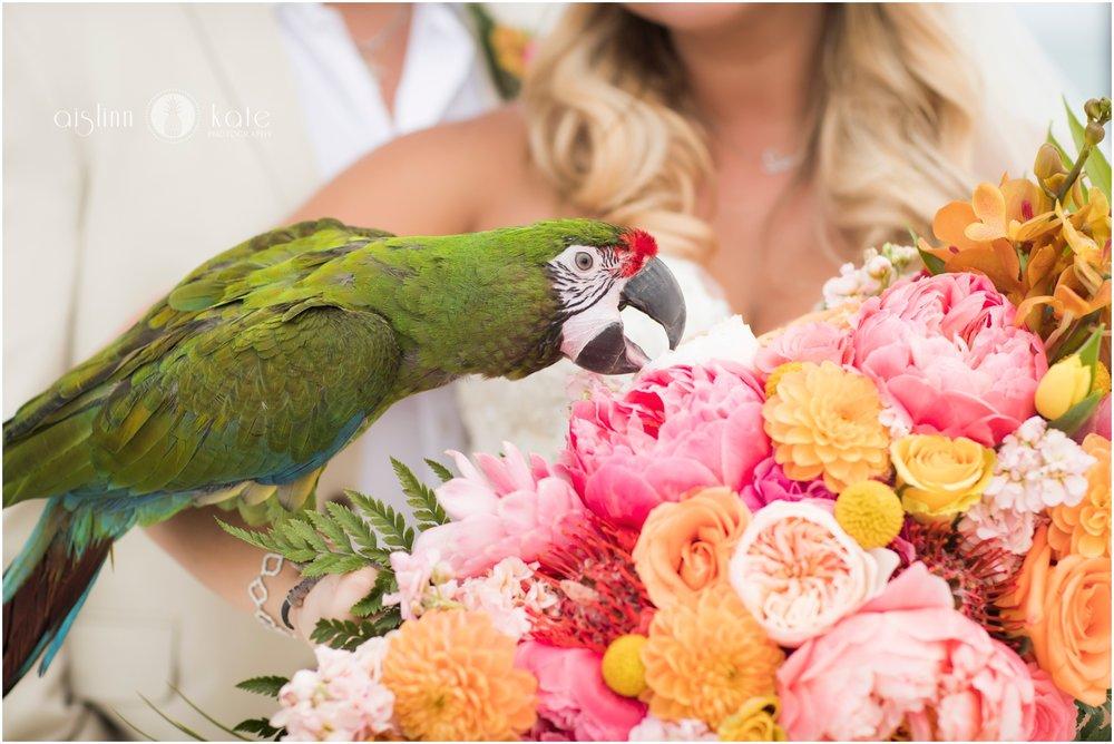 Pensacola-Destin-Wedding-Photographer_8663.jpg