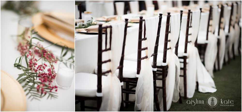 Pensacola-Destin-Wedding-Photographer_8571.jpg