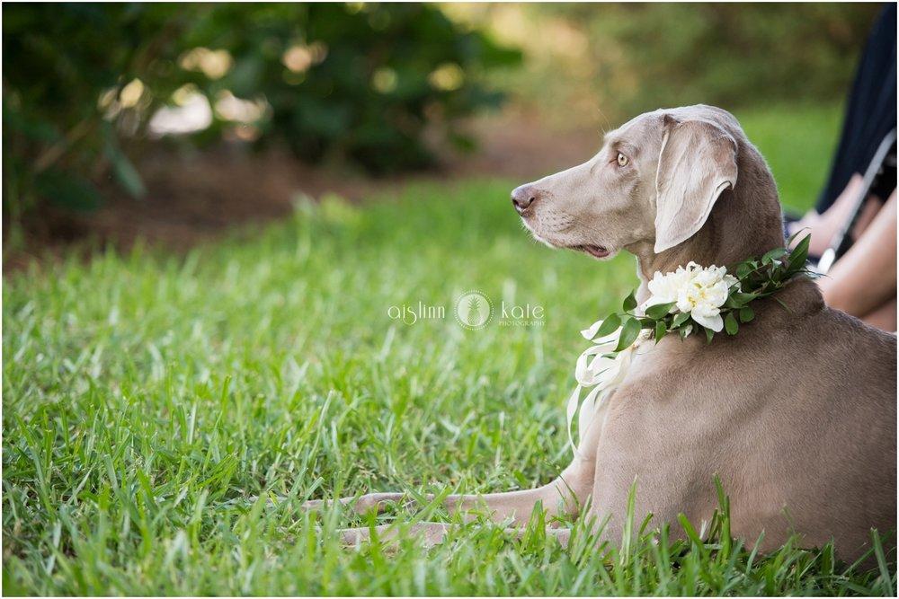 Pensacola-Destin-Wedding-Photographer_6550.jpg