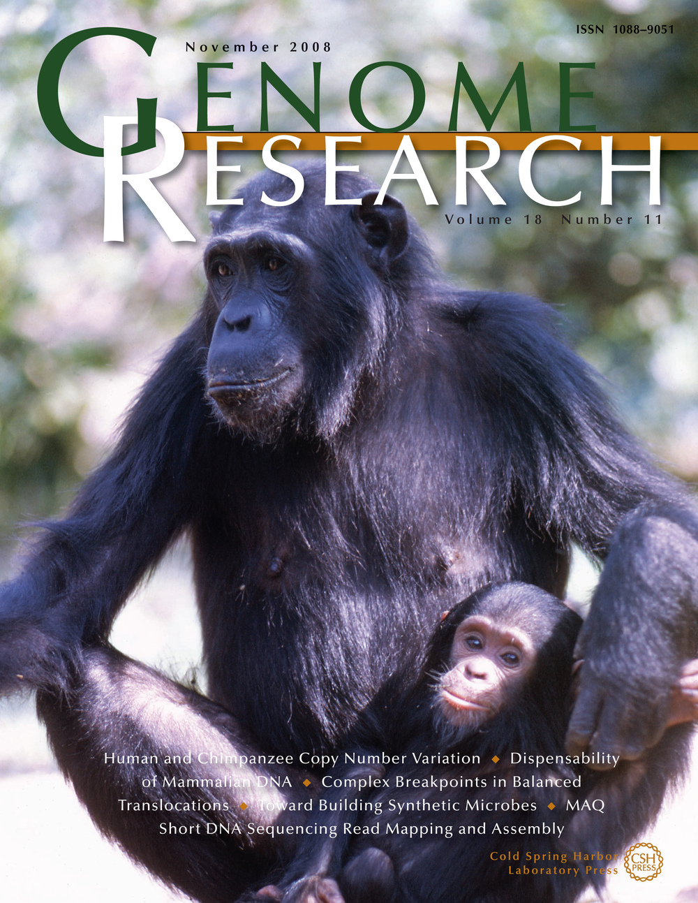 Genome Research  cover for  Perry et al. (2008) . Cover photo by Leanne Nash.