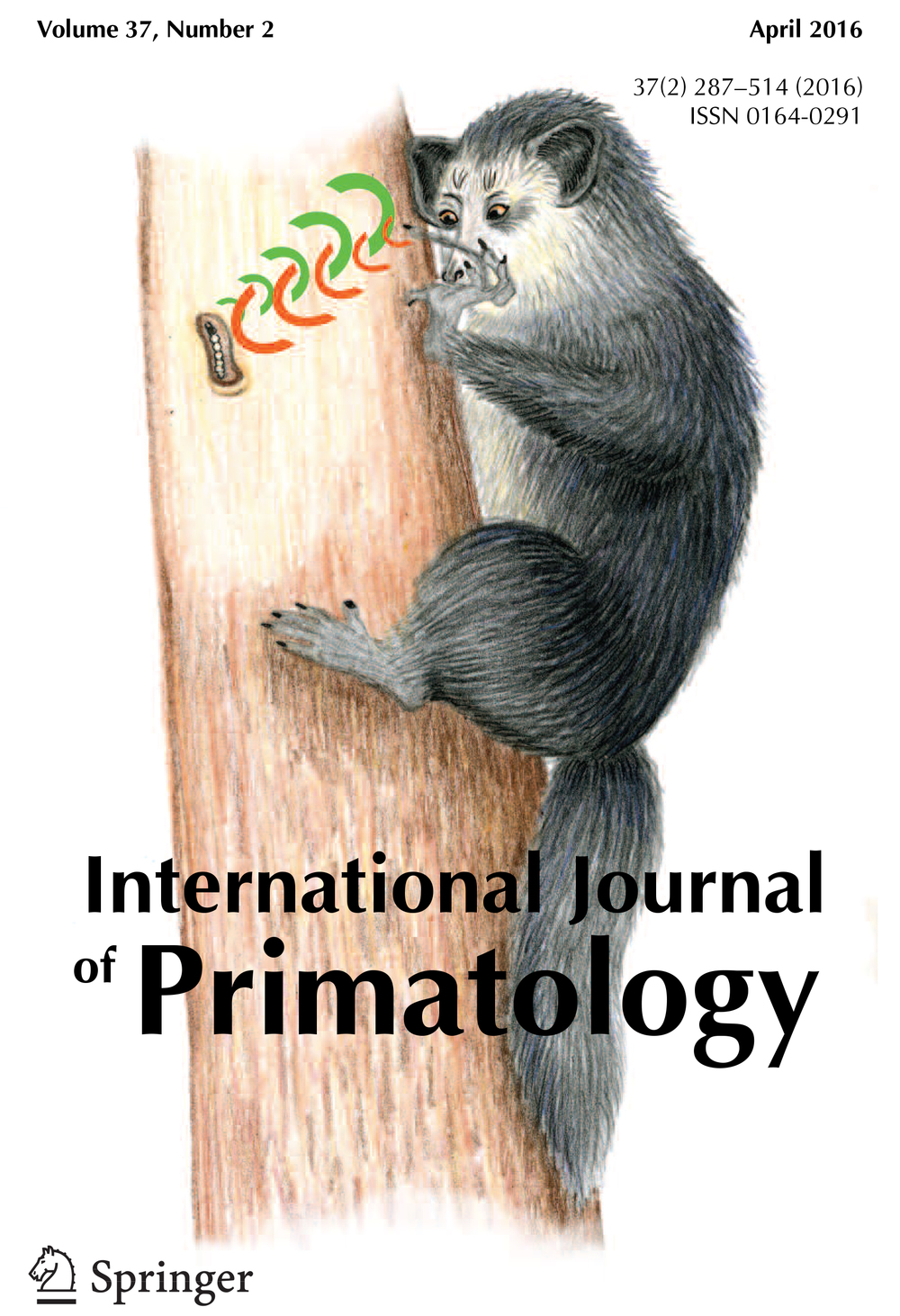 International Journal of Primatology  cover for  Thompson et al. 2016 . Illustration by Kate Thompson (Kate's undergraduate honors thesis in our lab developed into this paper)