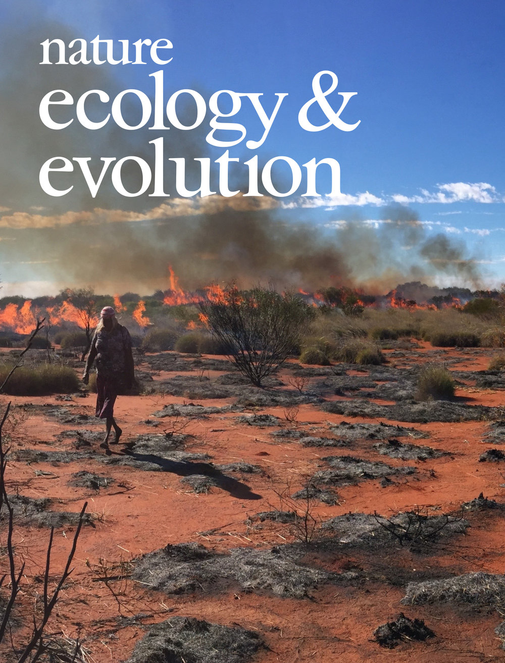 Nature Ecology & Evolution  cover for  Sullivan et al. 2017 . Cover photo by Douglas Bird.