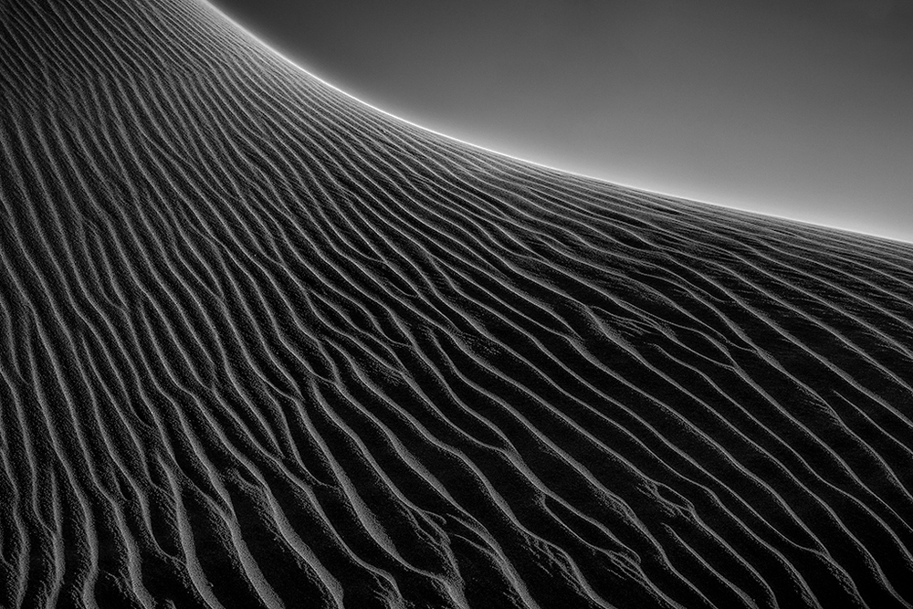 Dune Abstract  (Photo Credit: Dan Sniffin)