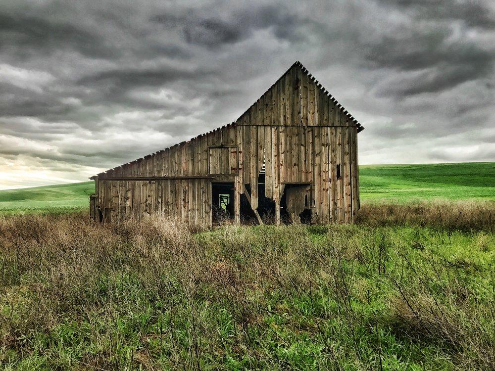 """""""iPhone Landscape"""" - Western Washington State"""