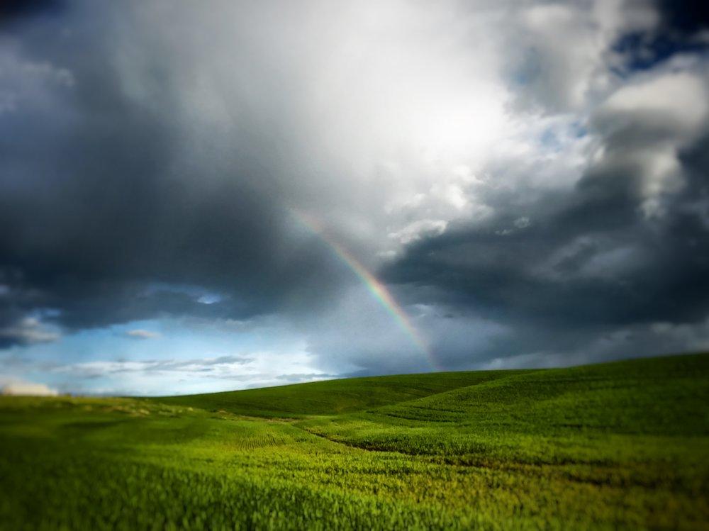 """""""Hope"""" - Western Washington State"""
