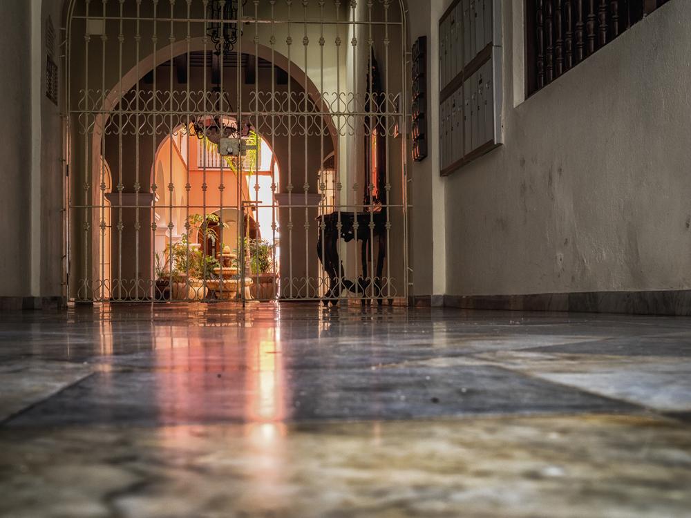 Portal Andaluz