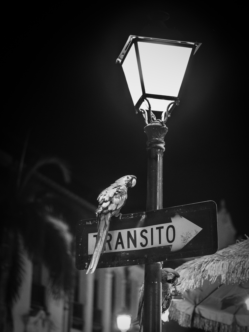 Calle Recinto Sur