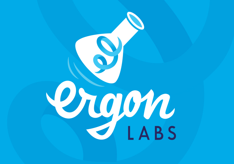 Logo and Visual Identity Ergon Labs