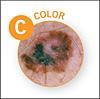C = Color