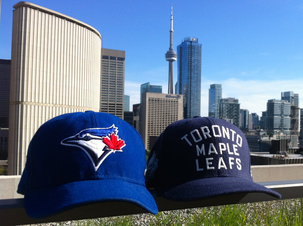 "* Section 108 is also a huge fan of ""Toronto's team"" - the maple leafs. but he wants to know: can the blue jays reach that level?"