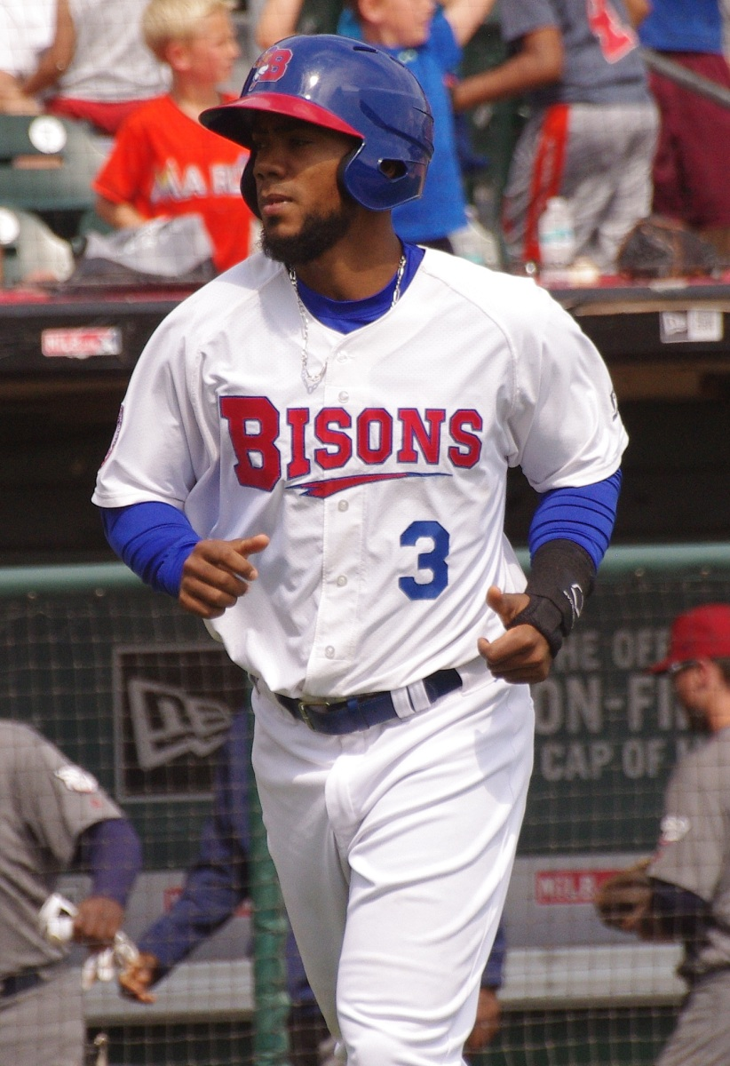 Toronto Blue Jays outfield prospect Teoscar Hernandez is 4-for-14 (.286), with a triple and two RBI, in three games in the Dominican Winter League this off-season. Photo Credit: Jay Blue